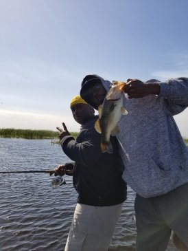 randymossfish10