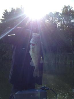 randymossfish14
