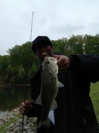 randymossfish17